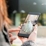 Chargeur automatique pour les petits animaux Chargeur automatique for animaux, 6L Capacité intelligente Autopetfeeder Téléphone mobile de surveillance à distance Version vidéo Dog automatique Alimenta
