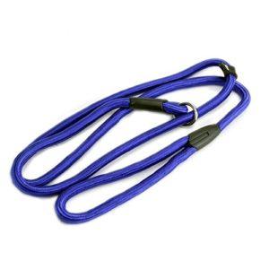 Doitsa 1PCS Chaîne de chien Fournitures pour animaux Ceinture de traction en nylon Chien chaîne Laisse d'animal de compagnie pour chien 1.0 * 140cm Bleu