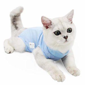 Doton Cat Professionnel Restauration Convient pour abdominaux Collerette des plaies ou des Maladies de la Peau, Alternative pour Chiens et Chats, après la Chirurgie Porter, Maison Vêtements(M,Bleu)