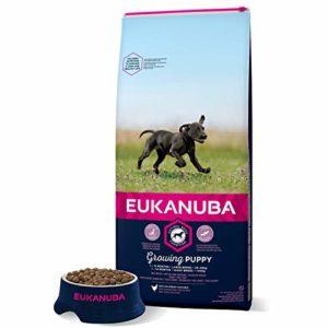 Eukanuba Croquettes pour chiot Grande Race, Poulet 15kg