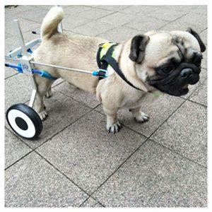 Fauteuil Roulant Chien, Voiture Chien, Convient aux Animaux Hind Entraînement de réadaptation des Membres Handicapés Handicapés Handicapés Assistance à la Marche , Grands Petits Chiens , Rég