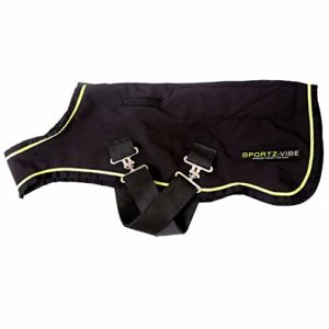 Horseware Sportzvibe Therapy Dog Tapis Medium Noir/noir et vert