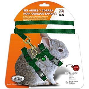 ICA DA1021 Kit Harnais et Sangle pour Lapins Nains, Vert