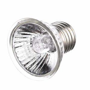 iStary Lampe de Chauffante Lampe Tortue Terrestre Ampoule Chaleur pour des Reptiles, Tortue, Lézard, Serpent, Full Spectrum Sunlamp, Éclairage d'isolation (25W)