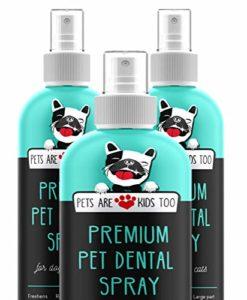 Pets Are Kids Too Spray Dentaire pour Animaux Domestiques (Large – 8 oz) est Le Moyen d'Éliminer la Mauvaise Haleine des Chiens et Chats (1 Bouteille)
