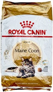 ROYAL CANIN MAINE COON ADULT Sac de 10 kg/Croquettes prémium pour le chat Maine Coon Adulte.