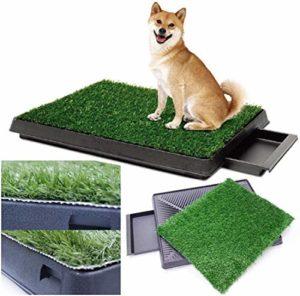 Sailnovo Toilette pour chien avec gazon artificiel pour chiot et chiot 63 x 50 cm