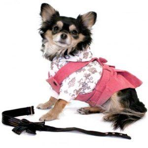THEO Jupe bavette pour Chien avec Ceinture Rose L de