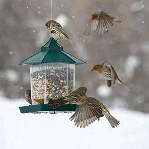 TopHGC Mangeoire à Oiseaux, Suspendu à mangeoire à Oiseaux Sauvages en Plein air Contenant des Aliments pour Oiseaux