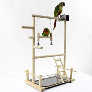 YANJJJ Terrain De Jeu pour Oiseaux en Bois Massif Support pour Oiseaux Support D'échelle en Acier Inoxydable OneSize