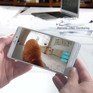 YLH Capacité Moyenne 4.3L Cat Dog Blu-Ray écran LCD Chargeur Automatique d'enregistrement WiFi Téléphone Mobile APP Intelligente Multi-Fonction Autopetfeeder Blanc. (Couleur : White)