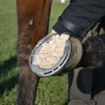 Absorbine 427944bigeloil Pad à cheval