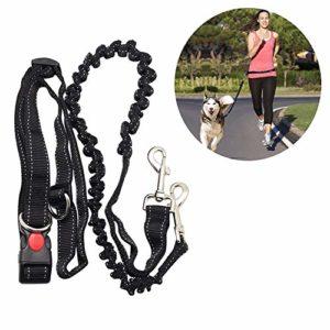 Adogo Laisse pour chien mains libres, de course, absorbant les chocs, extensible–Ceinture réglable–pour la course à pied, le jogging ou la marche