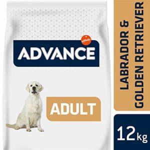 Advance Croquettes pour Chien Adulte Labrador Retriever Poulet et Orge 12 kg