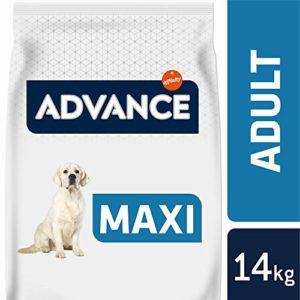 Advance Croquettes pour Chien Maxi Adulte Poulet et Riz 14 kg