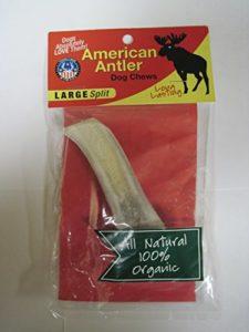 American Antler Split Antler, Grande