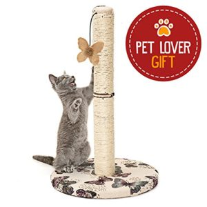 Animals Favorite Grattoir pour Chats avec Jouet Papillon Suspendu, Arbre à Chat Griffoir