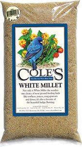 Coles Oiseaux sauvages Products Co Colesgcmi20Blanc Millet 20livres.