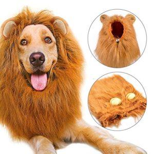 Crinière lion Perruque, Etpark Costume pour chien Crinière de lion avec Oreilles Cosplay Fête Vacances Photographie Fêtes