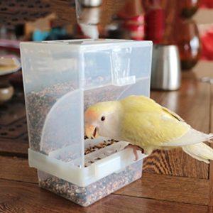 Girasool 1pièce Parrot Distributeur automatique de nourriture, et sans Dégât Acrylique à nourriture, cage Accessoires pour perruche ondulée perruche calopsitte élégante Finch Canaries Graines de nourriture 10x 12x 7,5cm