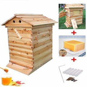Hengyuanyi Kit d'approvisionnement en abeilles automatique en bois avec 7p bâton d'abeille et équipement d'élevage d'abeilles