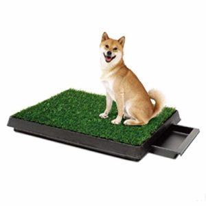 HYHY-O Intérieur Chien pour Animal Domestique d'entraînement WC Portable Puppy Plateau Loo Pad Tapis de Grande Facile à Nettoyer