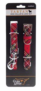 Lovely écossais Tartan Royal Stewart Ensemble collier et laisse pour chien réglable Disponible en 3tailles