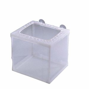 RainBabe Aquarium d'¨¦levage Isolation Pondoir avec Poisson pour Aquarium Pi¨¨ge ¨¤ Bo?te Flottant