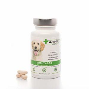 4-Beiner VITALITY-DOG: Multivitamines ABCD & E pour chiens & minéraux (zinc, fer, manganese etc.), complément alimentaire, également complément idéal pour la méthode d'alimentation BARF