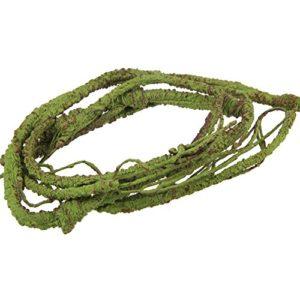 Emours Flexible Bend-a-Branch Jungle Vines Habitat Décor pour Lizard, Grenouilles, Serpents et Autres Reptiles, Petite, 1m de Long