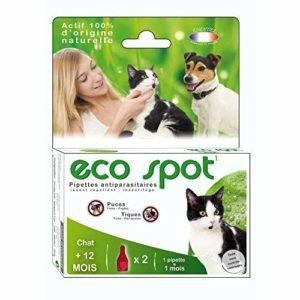Essentiel – Produit Naturel – Eco spot pour chats – ESSENTIEL (Chats (+12 mois) – 2 pipettes)