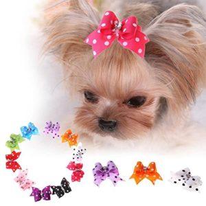 Flyfish 10pcs Accessoires de poils d'animaux chien chat Mini Pique à cheveux Papillon Pince à cheveux Coiffe