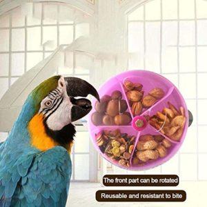 Augproveshak Parrot Bite jouet Bird Parrots Jouet de graines de boule de nourriture Rotation de roue pour Parrot perruche perruche Amazones Calopsittes Gris du Gabon cacatoès Ara Amazon Finch Canaries Cage Feeder