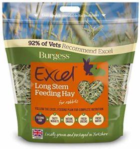 Burgess PET-308462 Excel Tige Longue Alimentation Foin 1 kg,