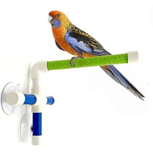 Hypeety – Perchoir pour oiseaux avec ventouse pour fixation sur fenêtre et douche