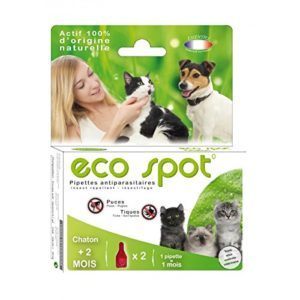Agecom – Eco Spot N°0 Chaton