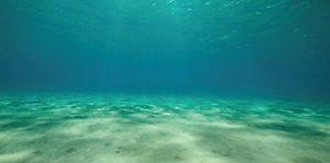 Aquatic Creations statique Fond d'aquarium, 36par 45,7cm, Ocean Floor