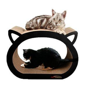 Arbre à chat Petcheer, griffoir et zone de détente pour chat avec herbe à chat