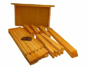 Beekeeping Supplies UK Hoffman Lot de 10 Cadres autoespacants pour Ruches Britanniques Emballés à Plat Apiculture
