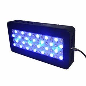 Hanchen 150W Lampe d'aquarium d'écran Tactile pour Reef Coral Fish Tank avec télécommande
