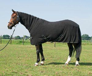 Harry's Horse 32200062-05195 Deluxe Couverture Polaire avec Manche Noir Taille L