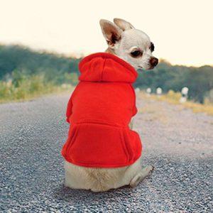 Idepet Chien Chat à Capuche Coton Manteaux pour Animaux Couleur Unie Vêtements pour Petit Chien Chiot Teddy Poodle Chihuahua (XL, Rouge)