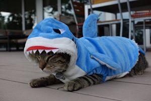 Le tout premier costume de requin pour chat – Animaux admis, bleu vif, super doux, 100% coton