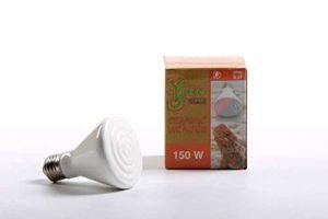 Pet Tribe PT47017 Gekotribe Lampe chauffante en céramique