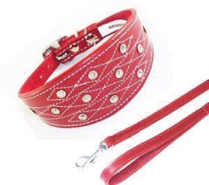 4doggies Collier en cuir avec strass et laisse assortie pour lévrier italien Rouge 25-30 cm