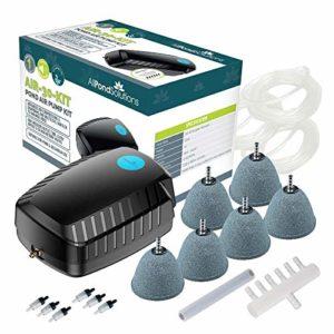 All Pond Solutions Kit de Pompe à air pour Bassin de Poisson Koi avec Pierres à air incluses, Tuyau d'air, Valve de Retour débit 30 litres/Minutes