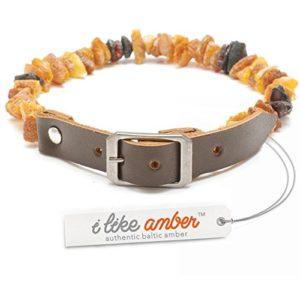 Amber Pet Line Collier pour chiens et chats–avec ceinture en cuir–Longueur de 20cm jusqu'à 75cm–Top Qualité réglable sur Amazon–Ambre Chaîne Collier de tique de tique Protection
