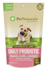Animal Domestique Naturel de du Vermont Daily probiotiques pour Chiens, Complément Santé Digestive, 60Bite de Taille Douce à mastiquer