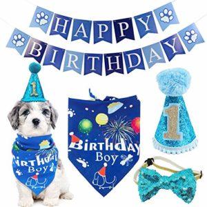 BIPY – Chapeau de 1er anniversaire – Bandana Bowite – Pour garçons, petits, moyens et animaux de compagnie – Bleu – Accessoire de toilettage – Décoration de fête