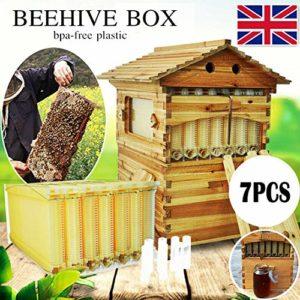 Boite en Bois de cèdre Naturel 7X Mise à Niveau de Ruche avec Cadre de Ruche et nid d'abeille en Bois de cèdre